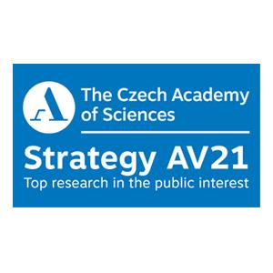 Strategy 21 AV
